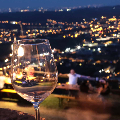 CALICI DI STELLE / WINE UNDER THE STARS